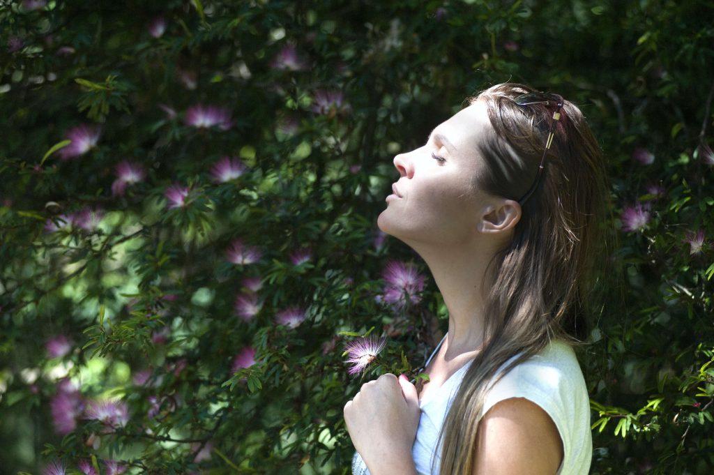 I AM essential training for mindfulness teachers