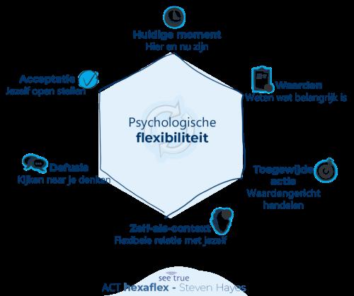 Hexaflex ACT opleiding therapeut coach instrument Steven Hayes I AM instituut aandacht mindfulness